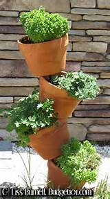 ... Gardening for Small Spaces | Dirt Cheap Gardening | Gardening
