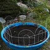 Kiddie Pool Garden - 40 Genius Space-Savvy Small Garden Ideas and ...