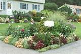 This street side mailbox garden is pretty amazing! Although I don't ...
