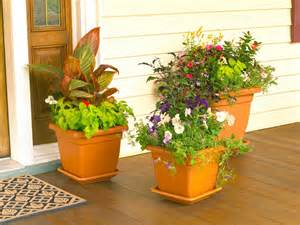 how to design a container garden landscaping ideas and hardscape