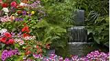 Paisaje con flores - 1920x1080 :: Fondos de pantalla y wallpapers