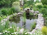 description garden pond 1 jpg