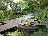simple garden design ideas simple garden design with lotus flower