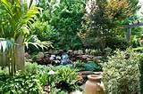 Azalea Garden Ideas | Native Garden Design
