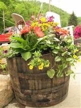 whiskey barrel planter | Garden | Pinterest