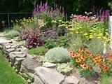 Garden Designs Zone 5 | GUIDE TO NORTHEASTERN GARDENING: Gardens Ideas ...