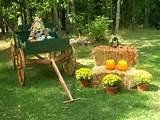 happy fall yall garden ideas pinterest
