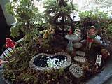 fairy garden garden ideas pinterest