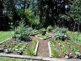 vegetable garden ideas garden and patio pinterest