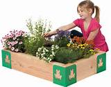 ... : 15 Amazing mini gardens for kids of all ages – Gardening Clan