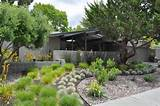 ... yard - Landscape - san francisco - by Huettl Landscape Architecture