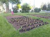 pin by my compassion on community garden ideas pinterest