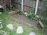 Small Garden Pond Design Ideas - DopePicz