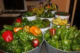 all about peppers how to grow all kinds of peppers in your garden