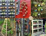 vertical gardening ideas landscape architecture pinterest
