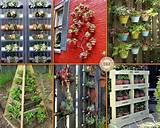 Vertical Gardening Ideas | Landscape architecture | Pinterest