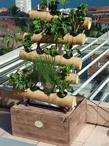 ... Hydroponic 30 - Bamboo Vertical Gardens and Balcony Wall Gardens