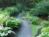 Woodland Garden Landscaping Ideas: 21 Astounding Woodland Garden Ideas ...