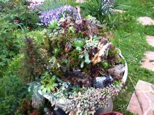 New creation | Succulent garden ideas | Pinterest