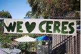 cute idea for a community garden outdoor spaces pinterest