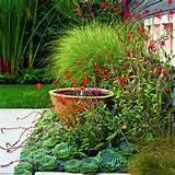 garden ideas images zen garden ideas for small spaces small zen garden