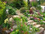 Jardin de rocaille sur pente avec plusieurs espèces de plantes à ...