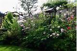 Aren't English gardens fabulous!😀