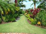 tropical landscape by Grants Gardens