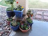 garden-design-ideas-container-gardening-1.jpg