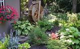 Para empezar debemos elegir las plantas o flores que vamos a poner en ...