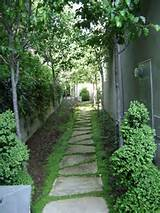 another great idea for narrow side yard | Paths, paving & surfacing ...