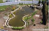 Build Cheap Pond - How to Make a small Pond - Water Gardening Projects