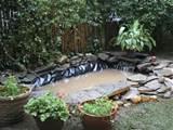 outdoor pond installation
