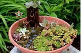 make a succulent fairy garden 9 diy succulent garden ideas at