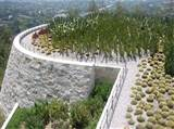 Rooftop Cactus Garden at the Getty Museum, Los Angeles