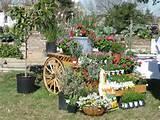 Pin by Pflugerville Garden on Community Garden Ideas | Pinterest