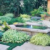 ... Drought Tolerant Gardens, Landscaping Ideas, Landscapes Ideas, Drought