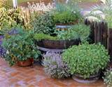 ... garden+barrel+planters+-+wood+barrel+planters+DIY+garden+ideas