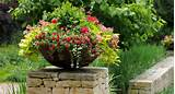 container garden design gardening tips garden guides