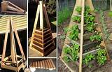 ... gardening ideas do not requires much space and they can be made in