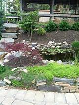 garden ideas garden pinterest