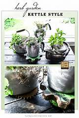 diy indoor herb gardens the garden glove