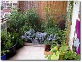 amazing ideas for small space gardening even including mobile gardens ...