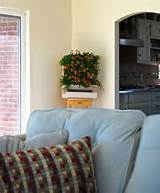 More indoor herb garden ideas. | Landscape & Garden Ideas | Pinterest