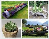 diy flower boxes gardening ideas pinterest