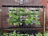 indoor vertical garden vertical indoor garden diy vertical garden