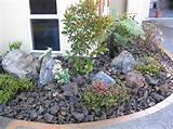 rock garden ideas yard and garden pinterest