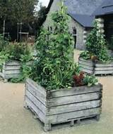 pallet garden raised bed gardening with pallets pinterest