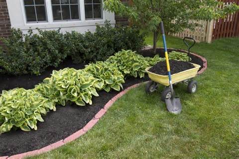 ... Landscaping & Tree Service, LLC - Connecticut Landscaping and Tree