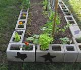 gardens beds cinder blocks gardens blocks idea raised beds gardens